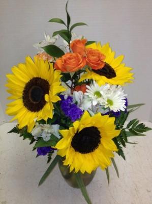 tina's sunflowers