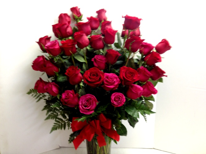 3 doz roses close up