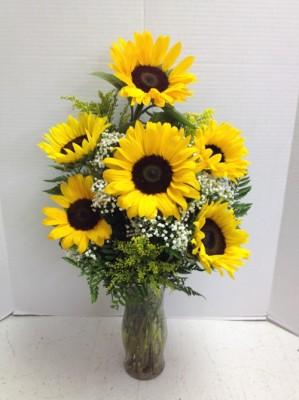 "<img src=""image.gif"" alt=""Sunflowers"" />"