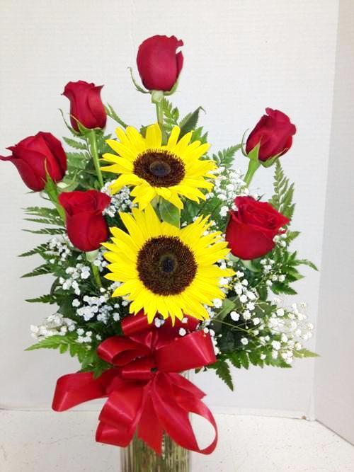 Sunflowers phoenix az