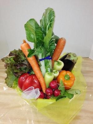 "<img src=""image.gif"" alt=""This is a Fresh Veggie Gift Basket"" />"