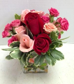 cube full of Roses