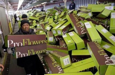 proflowers in a box