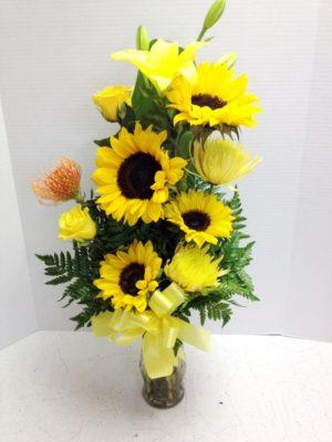 yellow sun flowers