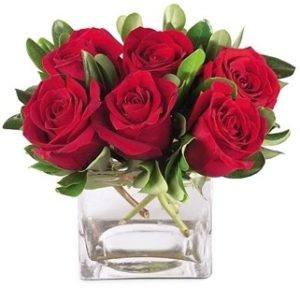 Red roses in a cube