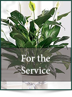 Funeral: For the Service