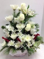 Pure White Christmas Flowers