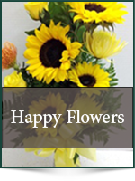 Get Well: Happy Flowers