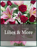 Roses: Lilies & More
