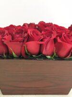 modern 16 roses