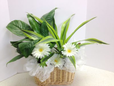 Silk flowers greens