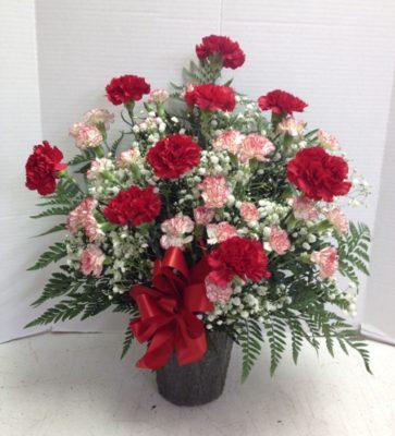 lotsa carnations