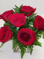 Short sassy Red Roses