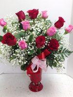 Majestically Stunning Roses